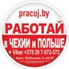logotip_pracuj_100